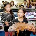 Nagoya Reptiles World2013(名古屋レプタイルズワールド)