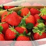 Pamimitas ng strawberry(いちご狩り)